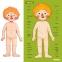 Магнитный пазл Тело человека MiDeer RUS (MD2031) 4